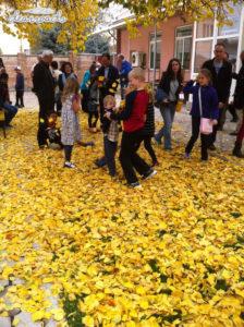 Những đứa trẻ con tụ tập chơi đùa cùng những đống lá vàng sau buổi lễ