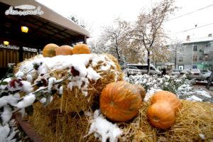 Những trang bí ngô chuẩn bị cho Halloween lẫn lộn trong tuyết